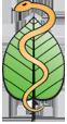 Logo Freie Heilpraktiker e. V.
